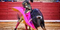 Morante con el capote en Córdoba