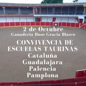 Convivencia de escuelas taurinas organizada por la de Pamplona